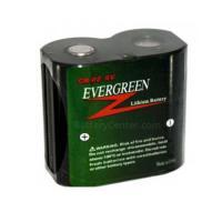 CR-P2 Lithium Camera Battery